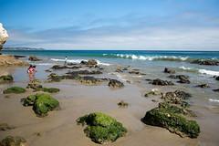 Let Us Play (kent.c) Tags: california usa beach cali canon us kent malibu westcoast californiabeach 2015 malibucalifornia elmatadorstatebeach kentc canon5dmarkiii 5dmarkiii kentcphotography