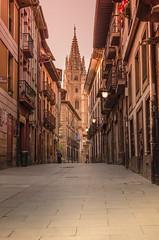 Oviedo, Asturias (nfaraldos) Tags: espaa spain cathedral catedral asturias oviedo minster spagna