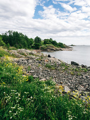 Hobbiton beach (side rocks) Tags: ocean flowers sea summer plants cloud plant flower beach nature beautiful clouds finland landscape landscapes helsinki meadow nordic finnish scandinavia beautifulnature finnishnature finnishsummer