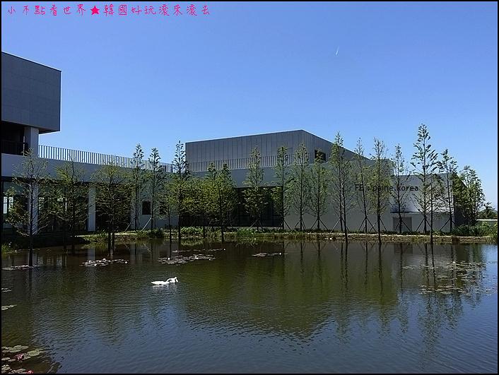 濟州本態博物館 (18).JPG