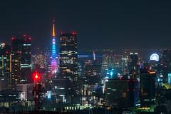 Tokyo (sechsterangriff) Tags: longexposure urban panorama japan skyline night tokyo cityscape nightshot zoom jp tokyotower japo tokyometropolitangovernmentbuilding shinjukuku tkyto  sonya7rii sel24240 ilce7rm2
