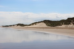 dunes (ChilliPepper0713) Tags: sea sky cloud canon reflections bay sand dunes may northumberland alnmouth 16th 2016 100d