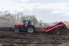 De-Stoning field before planting potatoes. (Edgaras Borotinskas) Tags: tractor scotland spring farming agriculture boness grimme masseyferguson masseyferguson7495dynavt destoning potatoesplanting grimmecs150combistar