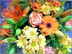 Multi-Coloured Flowers .. (** Janets Photos **) Tags: uk flowers flora bouquets multicolours
