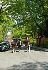 Street patrol... (foto-bug-sharmz) Tags: street horses horse toronto streets animals photography community streetphotography police parkdale patrol