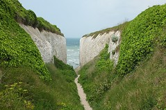 Down To The Beach (crashcalloway) Tags: sea landscape kent cliffs southcoast broadstairs kingsgatebay