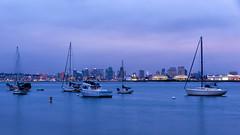 Blueish Hour (Nick Burwell) Tags: california urban seascape cali landscape boats nikon cityscape sandiego socal citylights bluehour d800e nikond800e