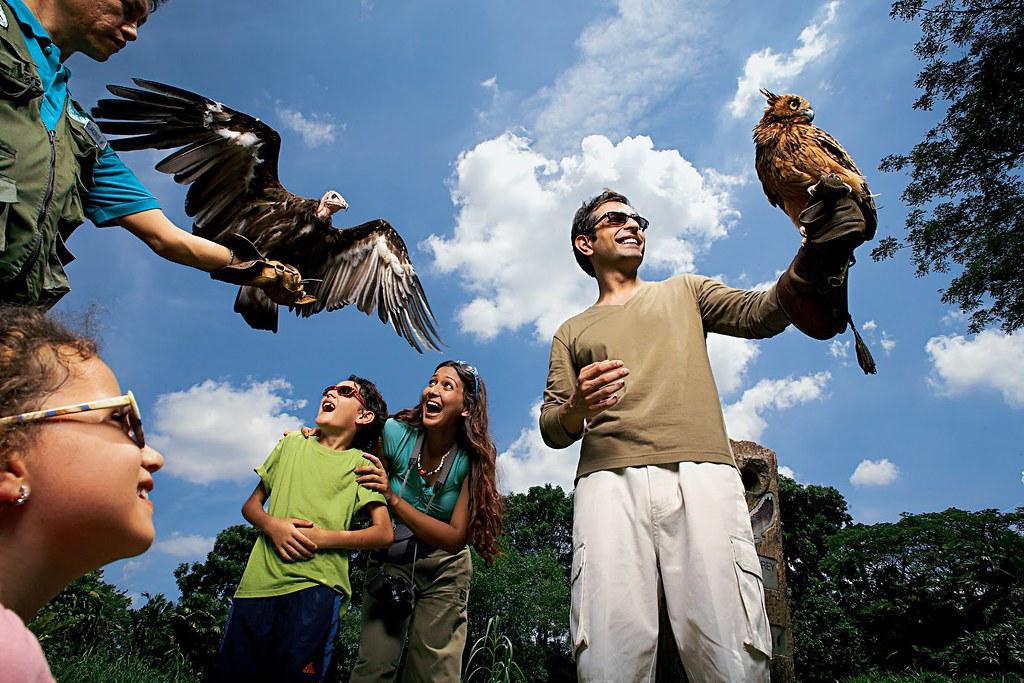 Jurong Bird Park.