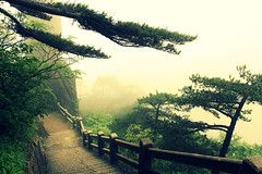 Welcome to HuangShan (Meeg.E) Tags: china trees mountain travelling green beauty landscape student scenery steps backpacking  peaks     huangshan anhui