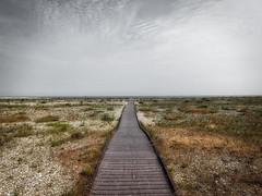 Beach Pathway (Dan O-Holland) Tags: ocean sea beach grass stone landscape moody path pebble walkway bleak pathway grassy
