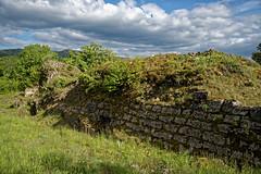 Chteau de Chteauneuf  Songieu - Bugey - Ain (Vaxjo) Tags: castle ruins chteau castillo auvergne castelli ruinen ruines ain chteauneuf rhnealpes bugey valromey songieu
