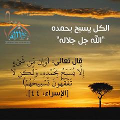 12 (ar.islamkingdom) Tags: الله ، مكان القلب الايمان مكتبة أسماء المؤمنين اسماء بالله، الحسنى، الكتب، اسماءالله