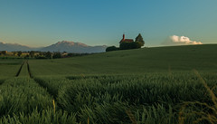 2016_Juni_UrswilschtART (schtART) Tags: alpes schweiz switzerland abend suisse sommer feld luzern himmel berge pilatus alpen lucerne churche kornfeld kapelle hochdorf urswil