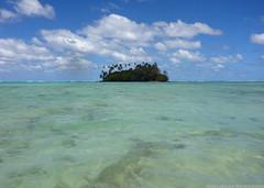 Lagoon solitude (Magryciak) Tags: ocean trip travel blue sea colour water swim lumix quiet pacific outdoor lagoon panasonic tropic rarotonga perfection 2015