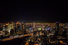 Osaka night. (Vince-leo) Tags: light japan night view   osaka