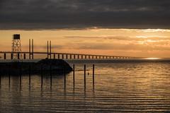 Tha Bridge (Infomastern) Tags: bridge sunset sea water bro malm vatten hav solnedgng sibbarp resundsbron