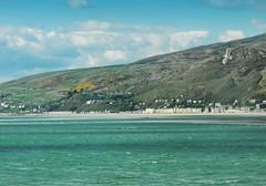 ... above the emerald Sea ... Wales Aberdovey Estuary Seagull Hills Sometime Irish Sea Bird Town Seaside Shore Seascape Water Mar Mare  Waves  (Almena14) Tags: sea seascape bird water wales mar town seaside mare waves seagull estuary hills shore aberdovey sometime irishsea