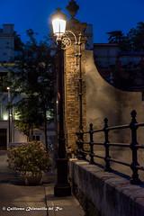 DSC_7256-Nikon-D7200-Sevilla-junio-2016-12 (guillermoquintanilladelrio) Tags: nikkor1685vr nikond7200