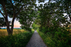 The green path (Appe Plan) Tags: road trees light sunset sky sun lund nature colors beautiful beauty clouds landscape skne nikon colours sweden path trail crop fields setting pathway appe d700