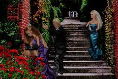 Molly and Company (Dolls Saga) Tags: life doll sinister barbie thief terror second gown elegant satin peril jewel barbiedoll pickpocket damselindistress jewelthief