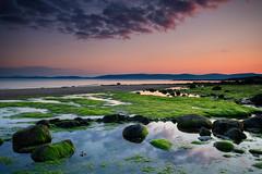A Moment of Tranquility (johnkaysleftleg) Tags: drumadoonbay arran isleofarran scotland coast coastline seaweed reflections rocks sunset evening canon760d sigma1020mmf456exdchsm ndhardgrad12