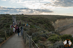20160430-2ADU-092 An der Great Ocean Road - 12 Apostel