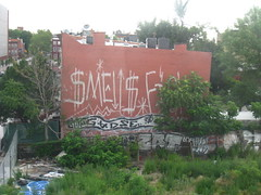 (Billy Danze.) Tags: new york nyc fish brooklyn graffiti smells gadse