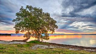 Sunset / Wallis Lake