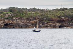 _MG_4132.jpg (MD & MD) Tags: family vacation june candid sydney australia downunder manlybeach 2016 otherkeywords