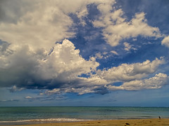 Solitary Seagull (brucecarlson66) Tags: ocean travel blue vacation sky panorama storm color beach nature water beauty leaves rain weather clouds dark landscape puerto sand wind ominous turquoise seagull atlantic rico edge tropical breakers across solitary sweep billow luquillo scattered threaten billowing grandeur