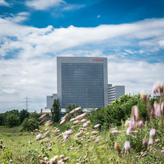 Quite windy (Sommer, Peter) Tags: city blue summer building green nature square wind outdoor sony windy vodafone bsquare windig eschborn mirrorless a6300 sel35f18