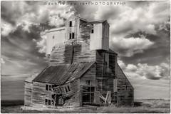 Abandoned Grain Elevator (DeniseDewirePhotography) Tags: blackandwhite abandoned clouds washington pullman grainelevator relic palouse easternwashington thepalouse