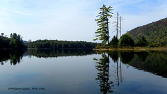 Moss Lake / Adirondack Park (dgwyant) Tags: autumn lake ny newyork mountains water reflections landscape lakes adirondacks adk 2012 eaglebay mosslake adirondackpark adkphoto dgwyant