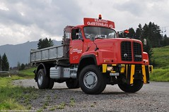 DSC_0152 (saurerdeutschland/Hose.Photography) Tags: old red mountains truck switzerland nikon tipper alt swiss transport berge camion ag kipper oldtimer gras heavy 2012 lkw lastkraftwagen saurer gartenbau uzwil allrad remund saurerdeutschland d330b