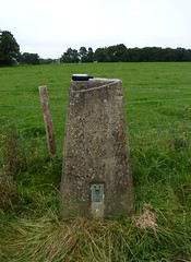Trigpoint pillar, Gumley Wood ( Claire ) Tags: wood monument leicestershire map maps pillar os gps survey ordnancesurvey ordnance surveying trigpoint gumley gumleywood