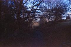 Path (Saturated Imagery) Tags: blue lomography toycamera grain leeds madeinitaly expiredfilm meanwood meanwoodpark ferraniasolaris200 epsonv500 boots200 photoshopelements9 leclicfunshooterfs30