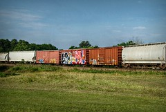 Anticipation (builder24car) Tags: railroad graffiti devo rollin trainart wholecar lae freighttraingraffiti paintedboxcar thisismycrack benchingthefreights