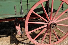 Wagon Wheel (cooper.gary) Tags: green wheel wagon