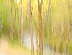 The Earth Adorned (ebergcanada) Tags: abstract nature spring edmonton icm millcreek