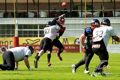 Cologne Falcons vs. Duesseldorf Panther 2013-05-12 16-15-55 (AmFiD) Tags: football gfl dsseldorfpanther colognefalcons amfid