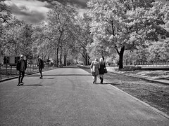 Infrared B&W in Hyde Park (Anatoleya) Tags: park city bw white black london garden lens ir four lumix olympus panasonic hyde micro infrared converted pancake 20mm 43 thirds f17 fourthirds microfourthirds 665nm anatoleya epl3