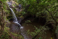 Waterfall (thefuton) Tags: travel nature water hawaii waterfall rainforest stream maui pipiwaitrail gulch oheogulch haleakalanationalpark pipiwaistream