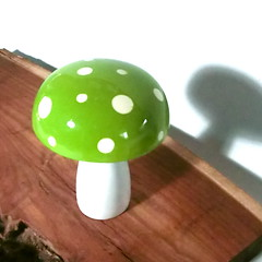 Trippy Toadstool - Wooden Mushroom - Lime Green with White polka dots (raycious) Tags: wood pink blue red white green mushroom yellow forest woodland garden toy botanical wooden handmade alice magic rustic waldorf adorable australia brisbane fairy earthy fungus kawaii toadstool lime etsy recycle wonderland magical eco homedecor turning polkadot woodcraft reuse reclaim woodturning kinoko woderland