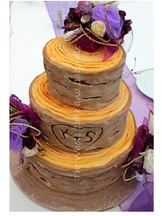 kelsie (The Whole Cake and Caboodle ( lisa )) Tags: wedding tree cake marquee purple rustic logs weddings whangarei kelsie bickerton