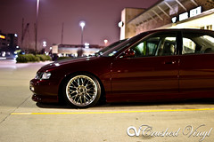 Honda Accord (DexNVisions) Tags: honda accord than slammed escm stanced autoessence crushedvinyl
