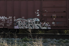 Pear (Revise_D) Tags: railroad bench graffiti ar graffitti pear graff tagging freight hoa nsf trainart fr8 benching fr8heaven fr8aholics benchedgoods