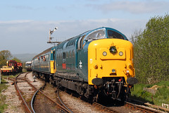 Deltic (Treflyn) Tags: blue castle english heritage electric train br cross diesel 5 rail railway loco class type british locomotive preserved 55 society corfe gala swanage preservation dps clag deltic harmans 55019 royalhighlandfusilier