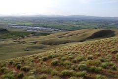 Down to the Yakima Valley (Sotosoroto) Tags: washington prosser yakimavalley horseheavenhills