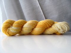 Borderwinds Fiber Handpainted Sock Yarn - Creamsicle (ladydanio) Tags: stash sock yarn handpainted fiber creamsicle borderwinds