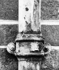 Day 137 - Rusty Pipe (Kelmon) Tags: bw texture oneaday blackwhite rust decay pipe photoaday pictureaday project365 project365137 project365051713 project36517may13